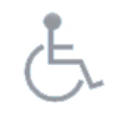 icona-disabili.jpg